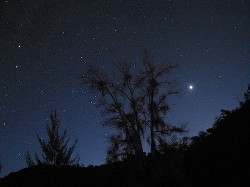 Stars over the Macquarie River, NSW.