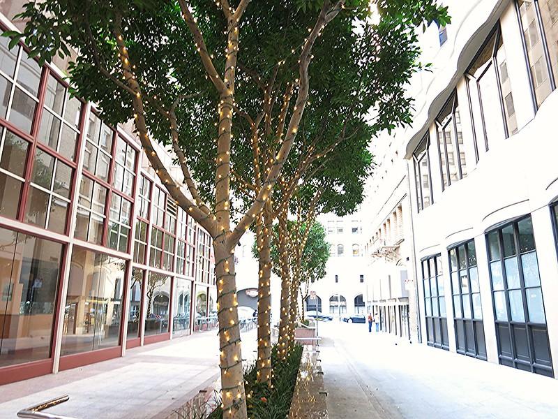 lit trees 2