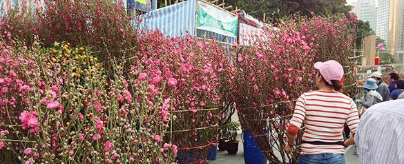 香港・年宵花市