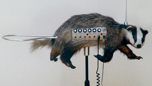 Badger Theremin or Badgermin