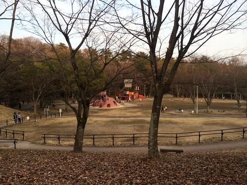 140201 大渕池公園(東側) 通称・たこ公園