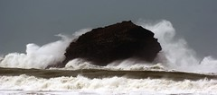 Gull rock