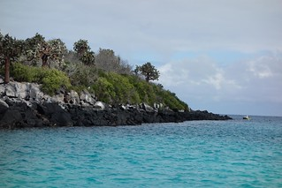 Isla Santa Fe, Galapagos