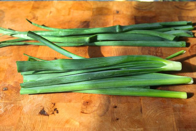 how to keep green onions fresh in fridge