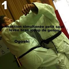20 Techniques de JJ : 2ème serie Ceinturage : Technique B) Yoko (lateral) Dori / Ceinturage des  bras par le côté