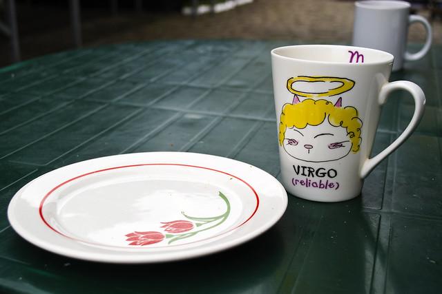Virgo #12 Zodiac signs