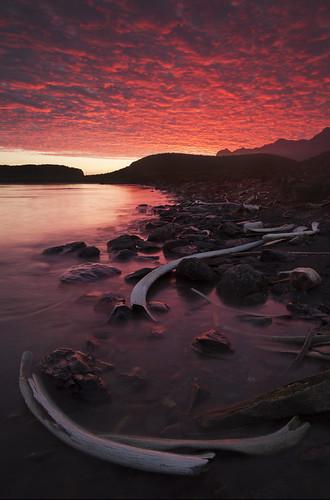 colour sunrise dawn antarctica bones whales southgeorgia whaling whalingstations canon5dmkii