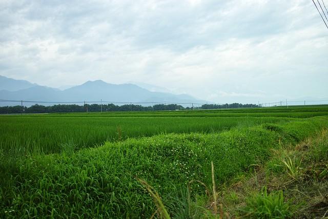 Photo:DP1M1614 By Takashi Q. Hanamura Photography