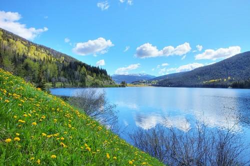 lake landscape bc wells gordon ashby jackofclubs unanimous gordeau