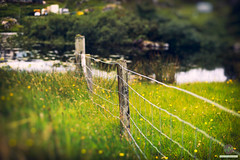 From Fence to Pond