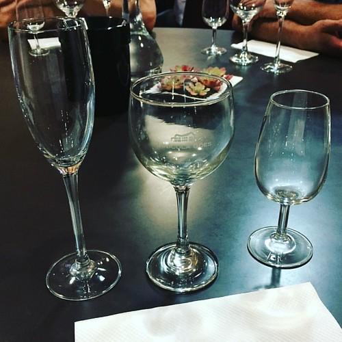 Aprendendo um pouco sobre o fantástico mundo dos vinhos...