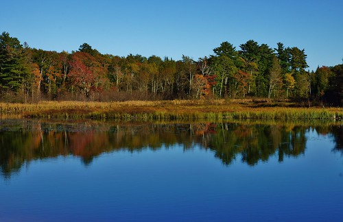 Reflective Fall Colors on the Pond