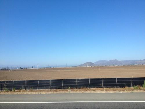 California July 2013