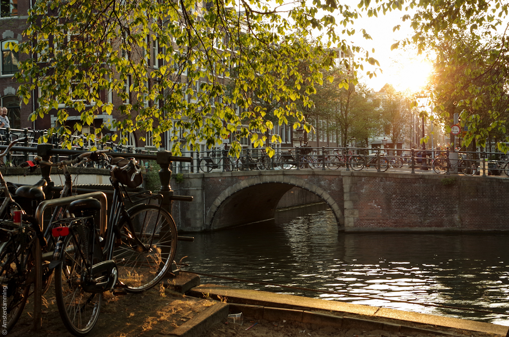 Amsterdam, Sunset over a Bridge