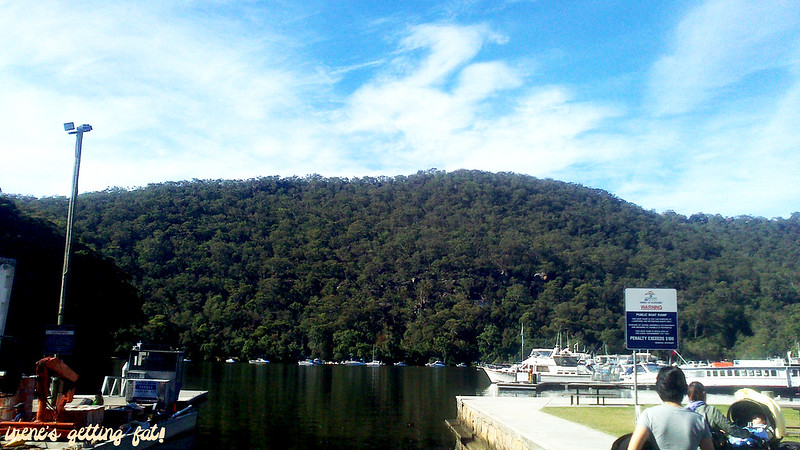 fishcafe-berowra-waters1