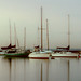 Early Morning Boats I