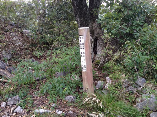 飯盛山 距離標識