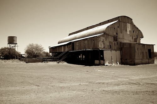 Shearing Shed (Sepia)