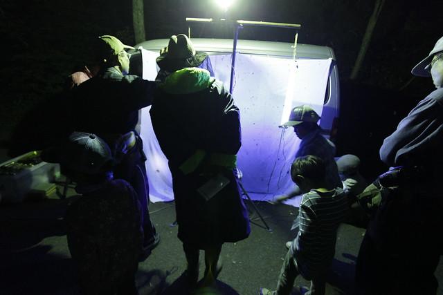 19時45分頃になり,ライトを点灯し観察が始まった.