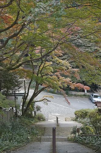 【写真】2013 紅葉 : 日向大神宮/2020-10-05/IMGP3371