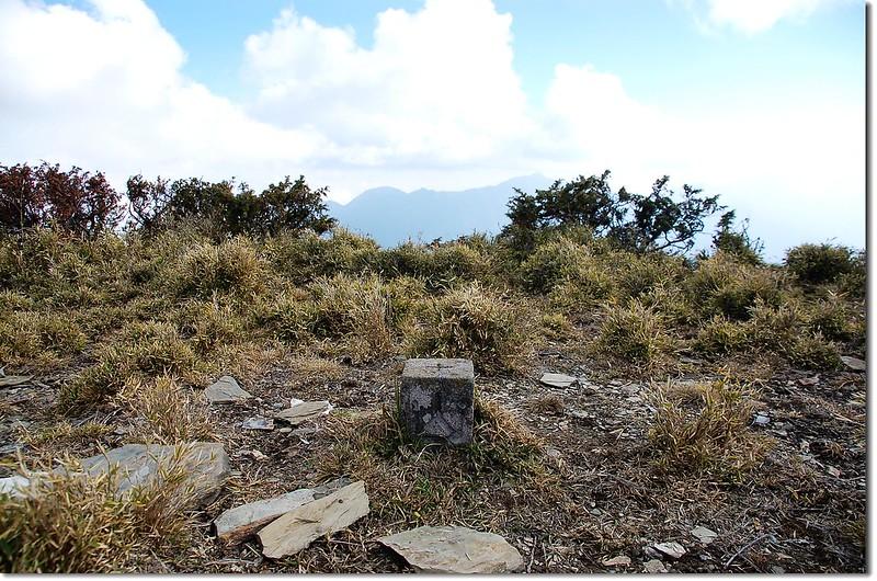 禮門山森林三角點(Elev. 3335 m) 2