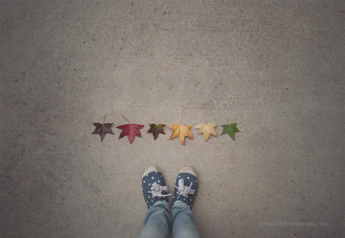 Thirty Days of Thankfulness, Day 20