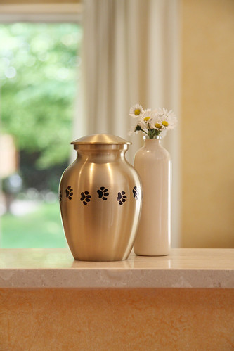 dog ashes urn gold metal paw prints daisies flowers grieving loss pet funeral