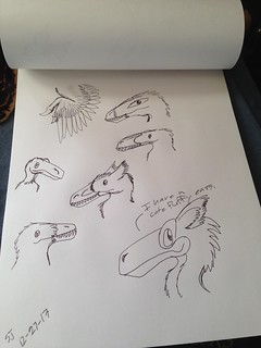 Raptor sketches