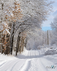 Winter in Rural Michigan, Montcalm County by Michigan Nut