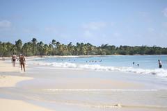 Strand Salines - Martinique, Karibik