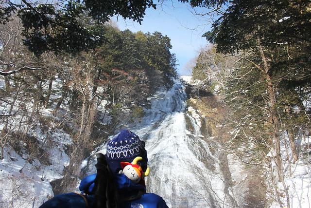20140112_戦場ヶ原_0046