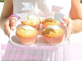 Cupcakes Cioccolato Bianco e Cocco