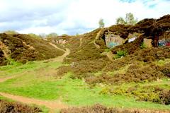 Quarry, Shipley Glen Moor