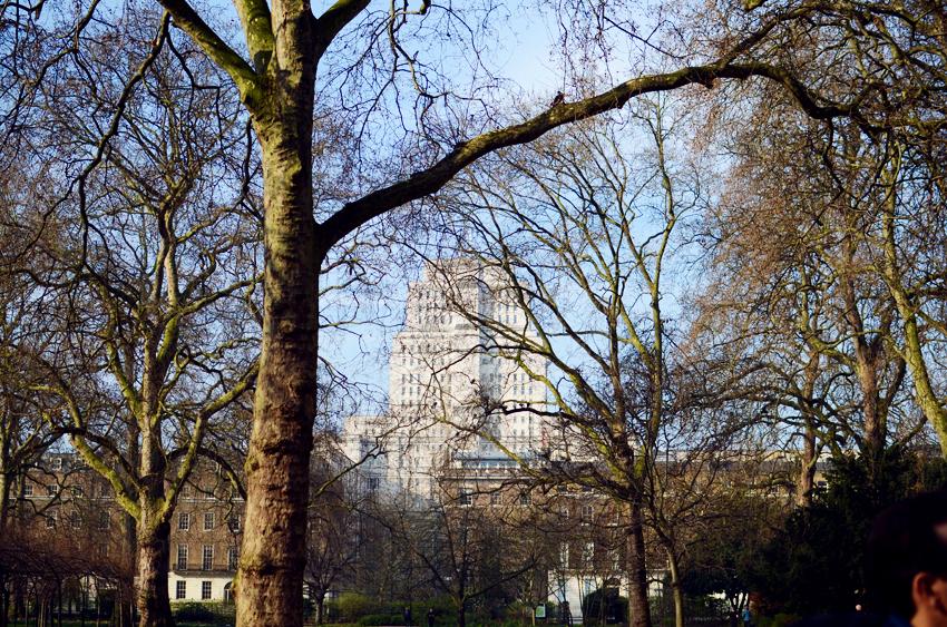 velvet trees russell square