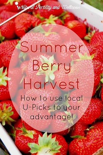 Summer Berry Harvest :: How to use local U-Picks to your advantage!