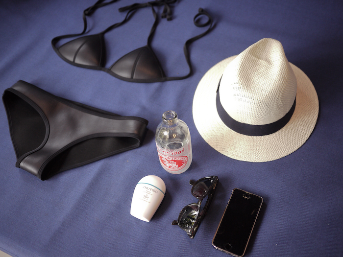 Travel Essentials-1