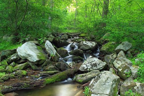 trees creek waterfall moss spring log lowlight rocks stream hiking pennsylvania falls boulders cascades creativecommons ravine deciduous lancastercounty riparian lancastercountyconservancy textermountainnaturepreserve harnishrun
