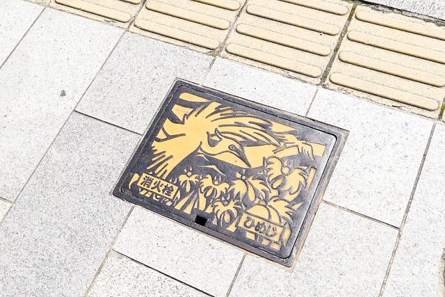 0331D6姬路、神戶_41