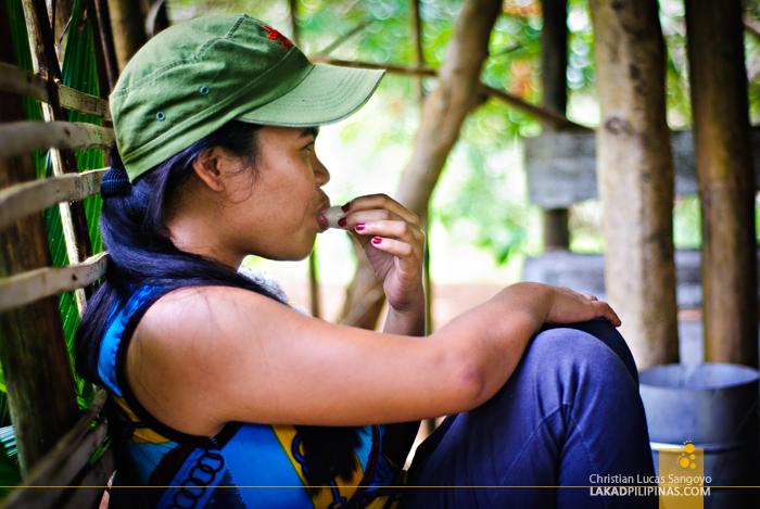 Rambutan Picking at Antique's Nica Farm