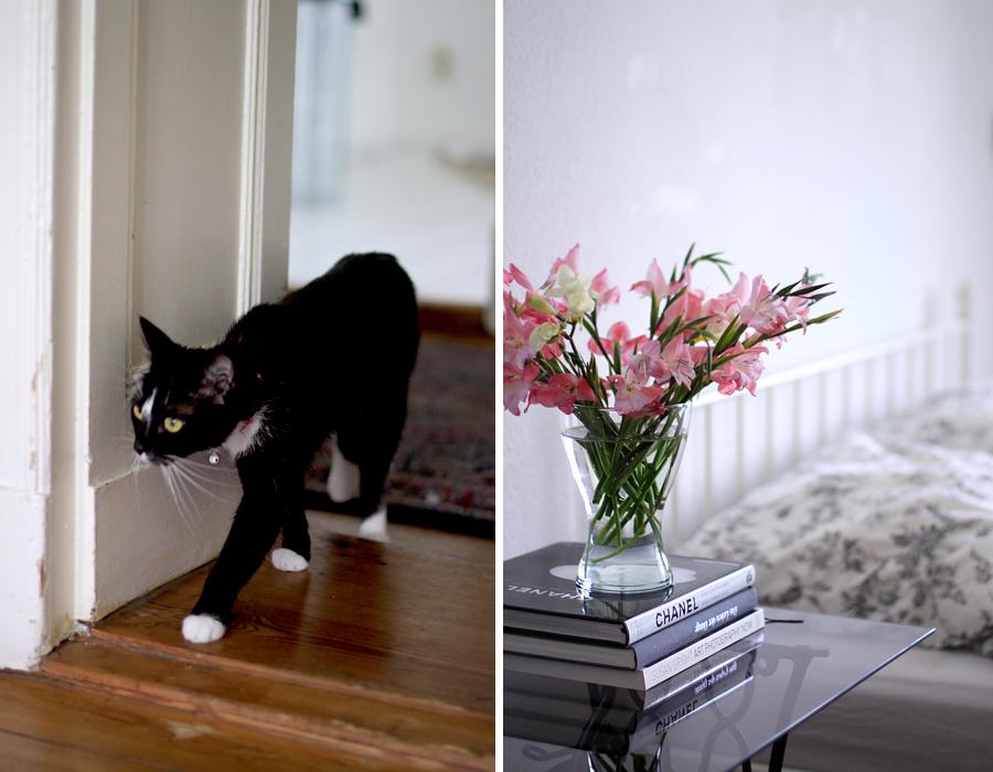 new room home decor living room flat berlin altbau jugendstil chic girly interior lifestyle design CATS & DOGS Ricarda Schernus 1