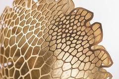 Corollaria jewelry