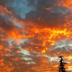 #nature #killingit #☺️ #sky #onfire #awesome #🌅