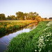 Irrigation Ditch #3 by AlexBurke