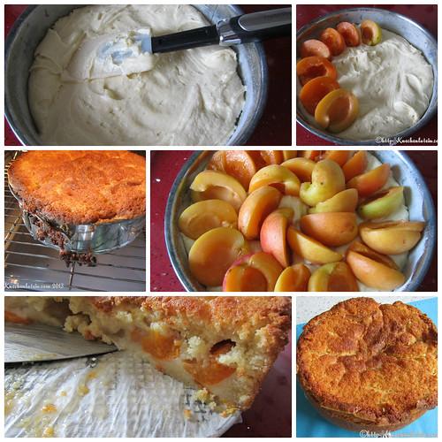 Aprikosenkuchen nach Dan Lepard