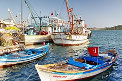 Fishing Boats Cunda