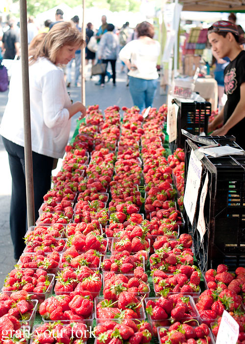 strawberry season at union square greenmarket farmers market nyc new york usa