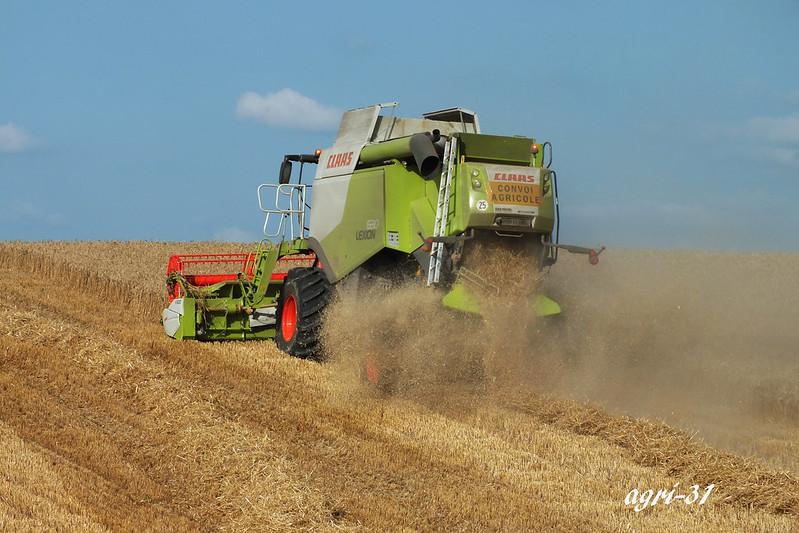 harvest climbing