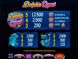 Dolphin Quest Slots Payout