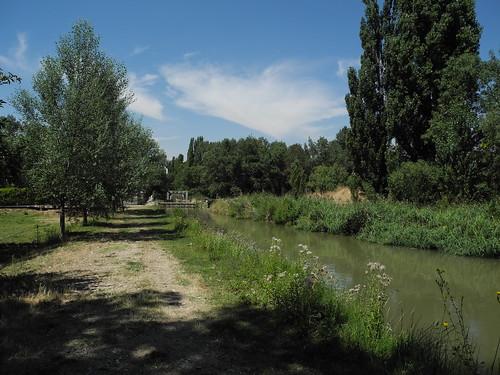 Tudela de Duero. Canal del Duero