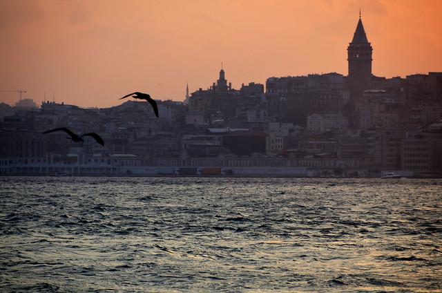 Atardecer con gaviotas frente al Bósforo y la torre Gala de Estambul